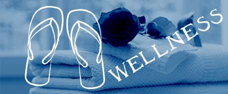 arredamento wellness centri benessere logo